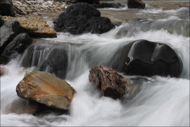 Naturphotographie | Photo: Michael Sandner