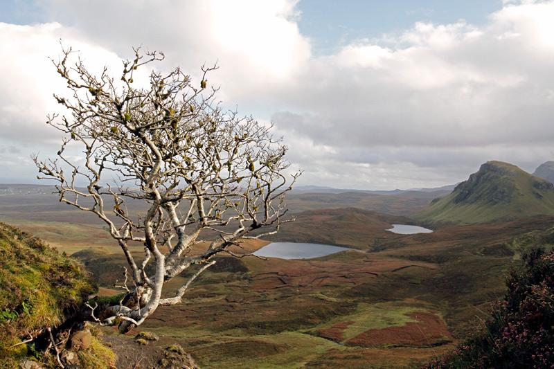 Quiraing, Schottland, Photo: Michael Sandner