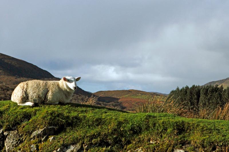 Isle of Skye, Schottland, Photo: Michael Sandner